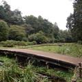 写真: 智光山公園