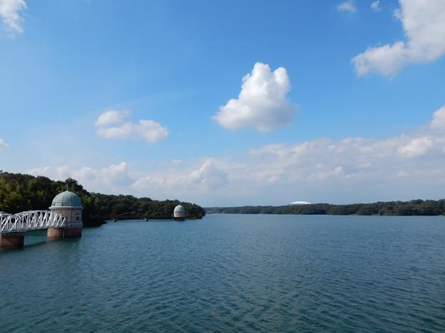 Photos: 多摩湖