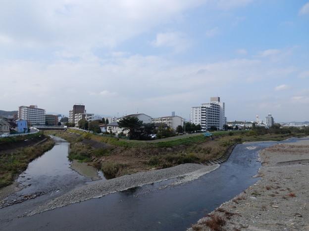 湯殿川と浅川の分岐