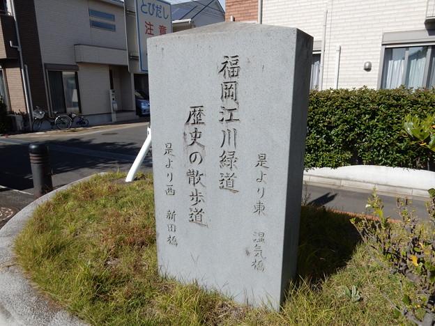 福岡江川緑道