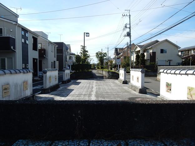 江戸ゾーン