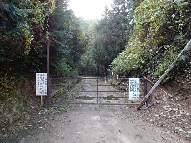 林道 梅の木線(起点)