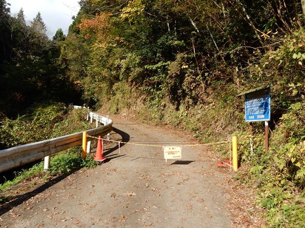 林道 西の入・ホオバ沢線