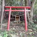 写真: 白山神社