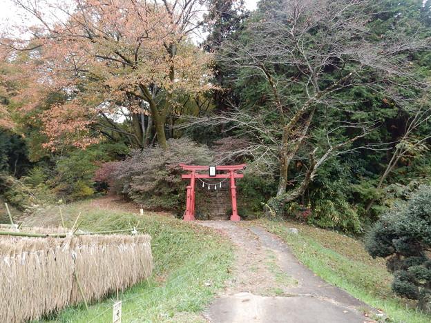 貴志嶋神社