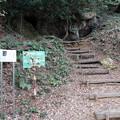 Photos: 弁天洞穴