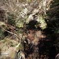 大ヨケの滝