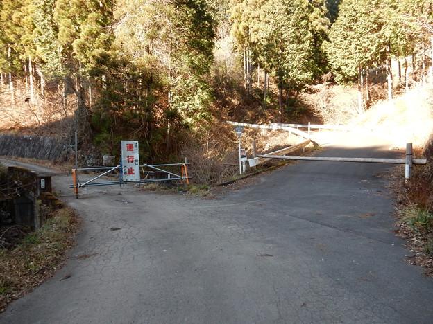 林道 滝の入線 起点
