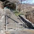 初音坂さくら階段