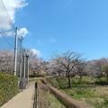 Photos: 相原中央公園