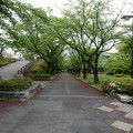 Photos: ひかり公園