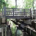 Photos: 兎橋