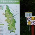 Photos: 七沢森林公園