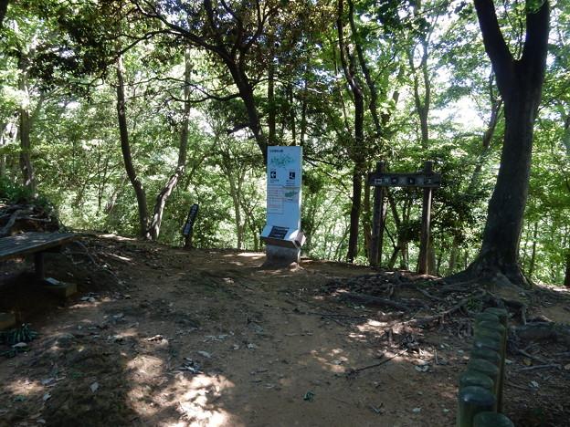 Photos: 尾根道