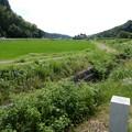 Photos: 鳩川起点