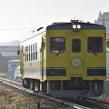 いすみ鉄道 普通列車 55D