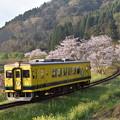 いすみ鉄道 普通列車 4D (いすみ350)