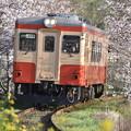 いすみ鉄道 普通列車 3D (キハ20 1303)