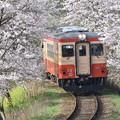 いすみ鉄道 普通列車 8D (キハ20 1303)