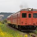 いすみ鉄道 普通列車 517D (キハ52 125 + キハ28 2346)