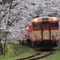 いすみ鉄道 普通列車 520D (キハ28 2346 + キハ52 125)