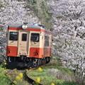 いすみ鉄道 普通列車 53D (キハ20 1303)