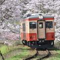 Photos: いすみ鉄道 普通列車 54D (キハ20 1303)