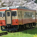 いすみ鉄道 普通列車 54D (キハ20 1303)