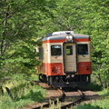 Photos: いすみ鉄道 普通列車 54D