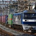 写真: 貨物列車 (EF210-120)