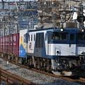 写真: 貨物列車 (EF641038)