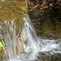 Photos: 水の流れ