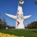 写真: 太陽の塔