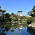 Photos: 日本庭園と大阪城 (広角)
