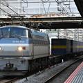 貨物列車 (EF66 132)