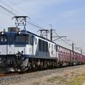 貨物列車 (EF641033)