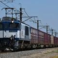 Photos: 貨物列車 (EF641011)