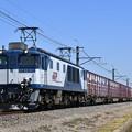 貨物列車 (EF641011)