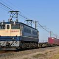 貨物列車 (EF652096)
