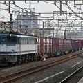 貨物列車 (EF652093)
