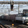 Photos: 貨物列車 (EF652088)