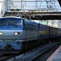 貨物列車 (EF66126)