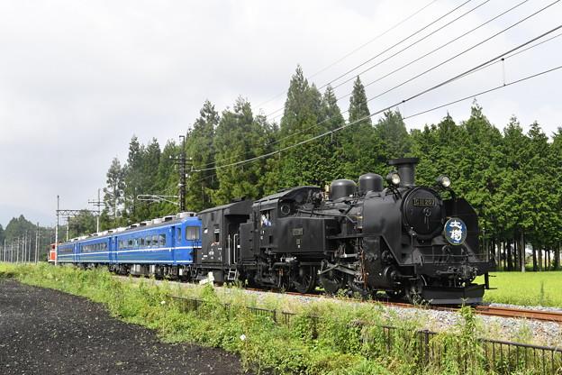 Photos: SL大樹 4号 (C11207)