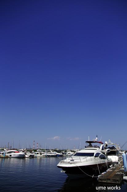 Marin In Blue