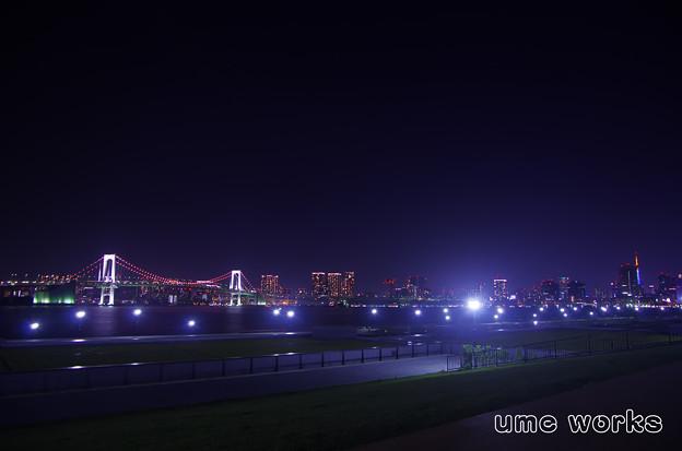 写真: 豊洲ぐるり公園に行こう(^^♪