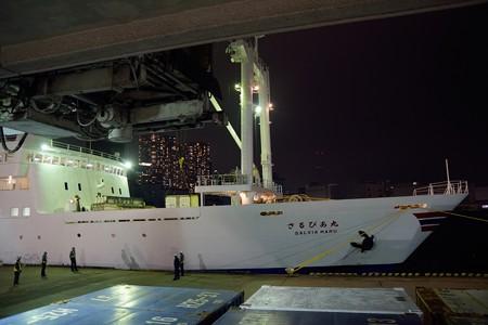 東京湾夜景航路-47