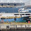 Photos: 中国サンゴ密漁船が写ってた