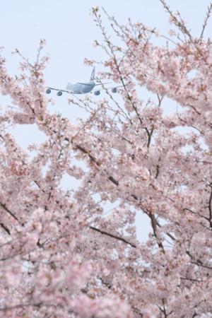 春の空の中、上昇中
