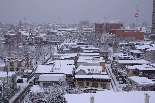 北側の雪景色02