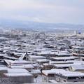 Photos: また雪が積もった!